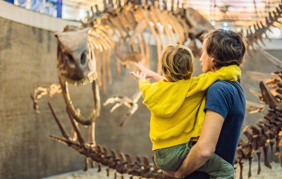 Dad and boy watching dinosaur skeleton in museum.